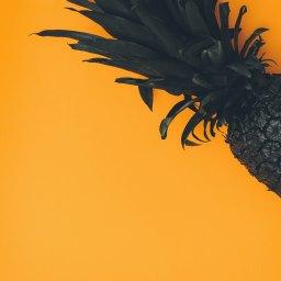 Pineapple –Anonymous