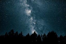 Stars – Isabel Flessas