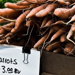 Carrots by Elie Zimring